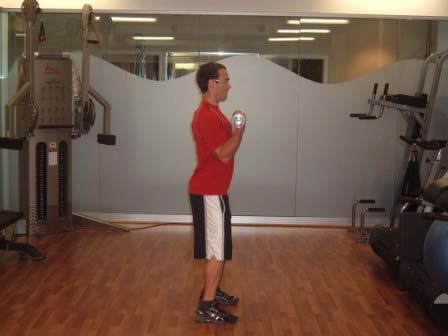 exercise at home trainers