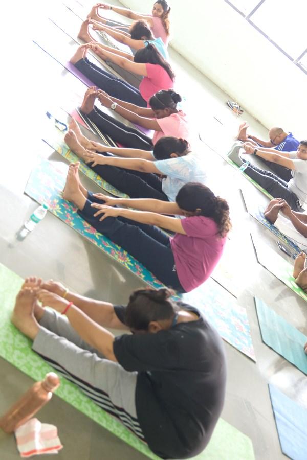 Best Yoga Wellness Companies India