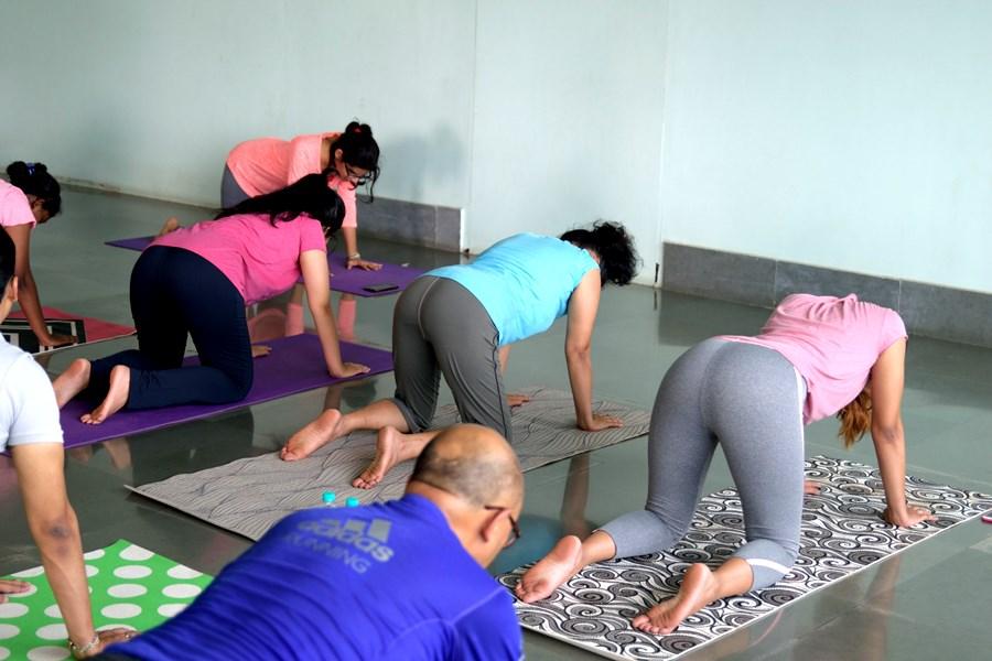 Female Employees Doing Yoga