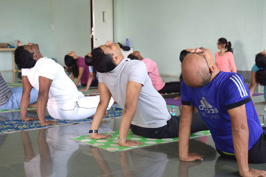 Yoga Classes Companies