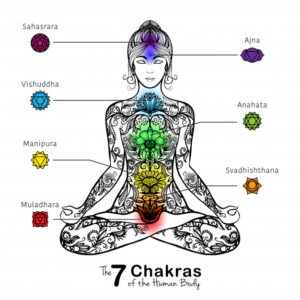 7 chakras of the body and meditating